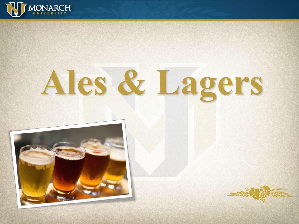 Beer Ingredients (Review)