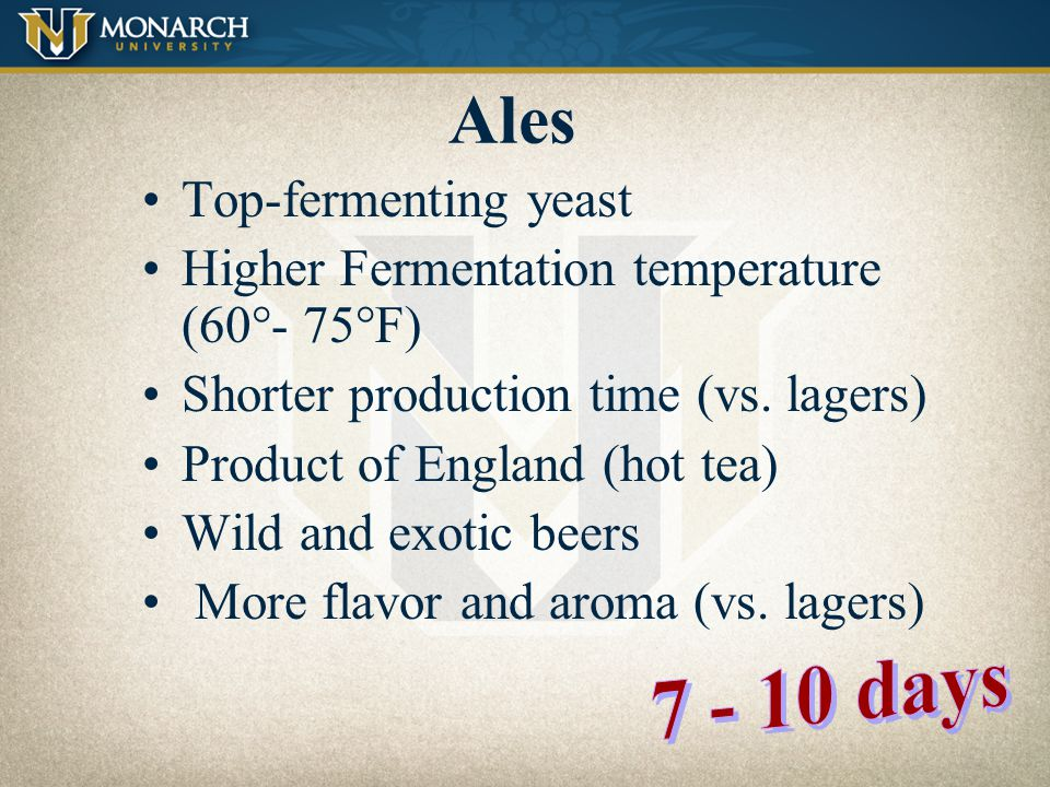 Ales & Lagers