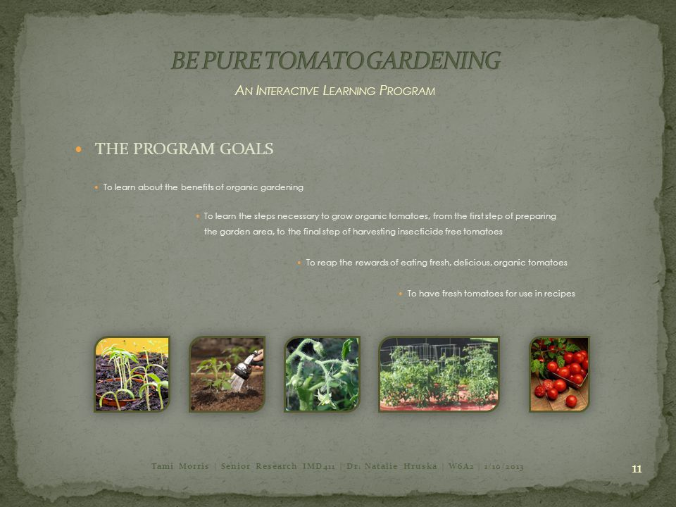 11 A N I NTERACTIVE L EARNING P ROGRAM THE PROGRAM GOALS To have fresh tomatoes for use in recipes To learn about the benefits of organic gardening To learn the steps necessary to grow organic tomatoes, from the first step of preparing the garden area, to the final step of harvesting insecticide free tomatoes To reap the rewards of eating fresh, delicious, organic tomatoes Tami Morris | Senior Research IMD411 | Dr.