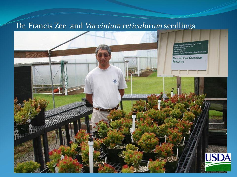 Dr. Francis Zee and Vaccinium reticulatum seedlings