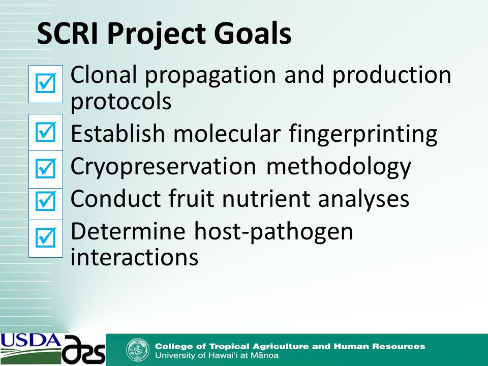 SCRI Project Goals Clonal propagation and production protocols Establish molecular fingerprinting Cryopreservation methodology Conduct fruit nutrient