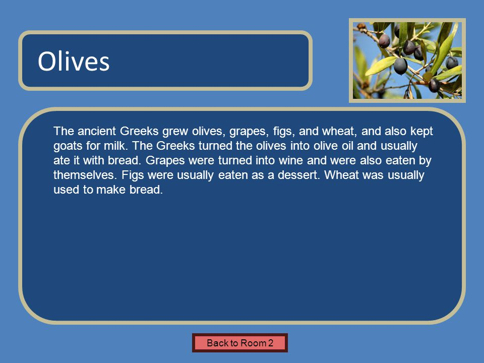 Name of Museum The ancient Greeks grew olives, grapes, figs, and wheat, and also kept goats for milk. The Greeks turned the olives into olive oil and