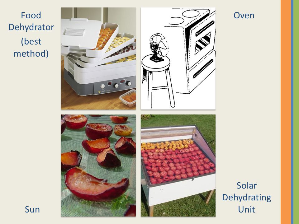 Food Dehydrator (best method) Oven Sun Solar Dehydrating Unit