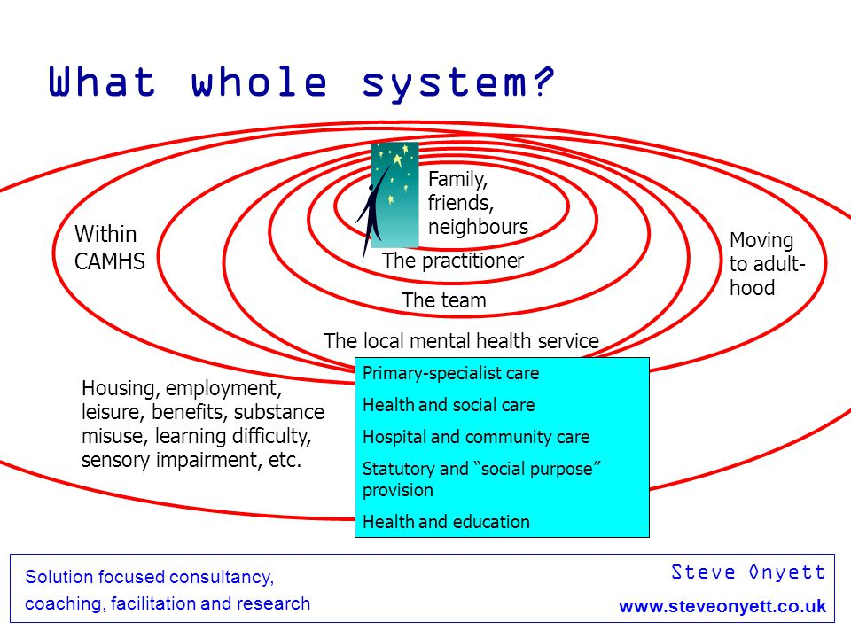 Steve Onyett www.steveonyett.co.uk Solution focused consultancy, coaching, facilitation and research Respectfully consider these cells and provide information to inform AdvantagesDisadvantages Change+- No change-+