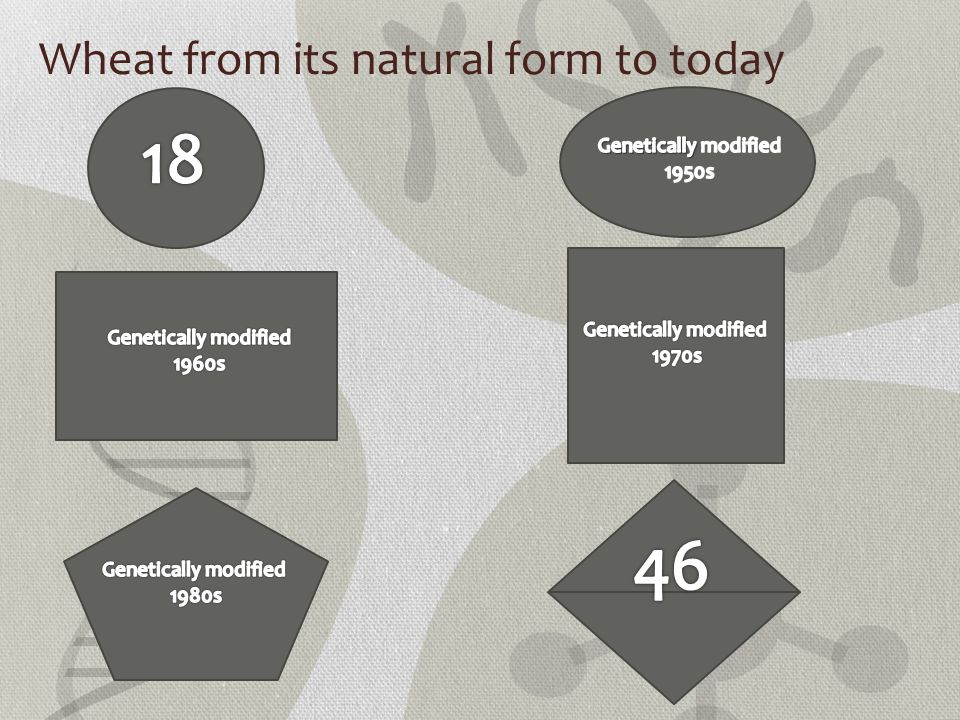 Wheat from its natural form to today