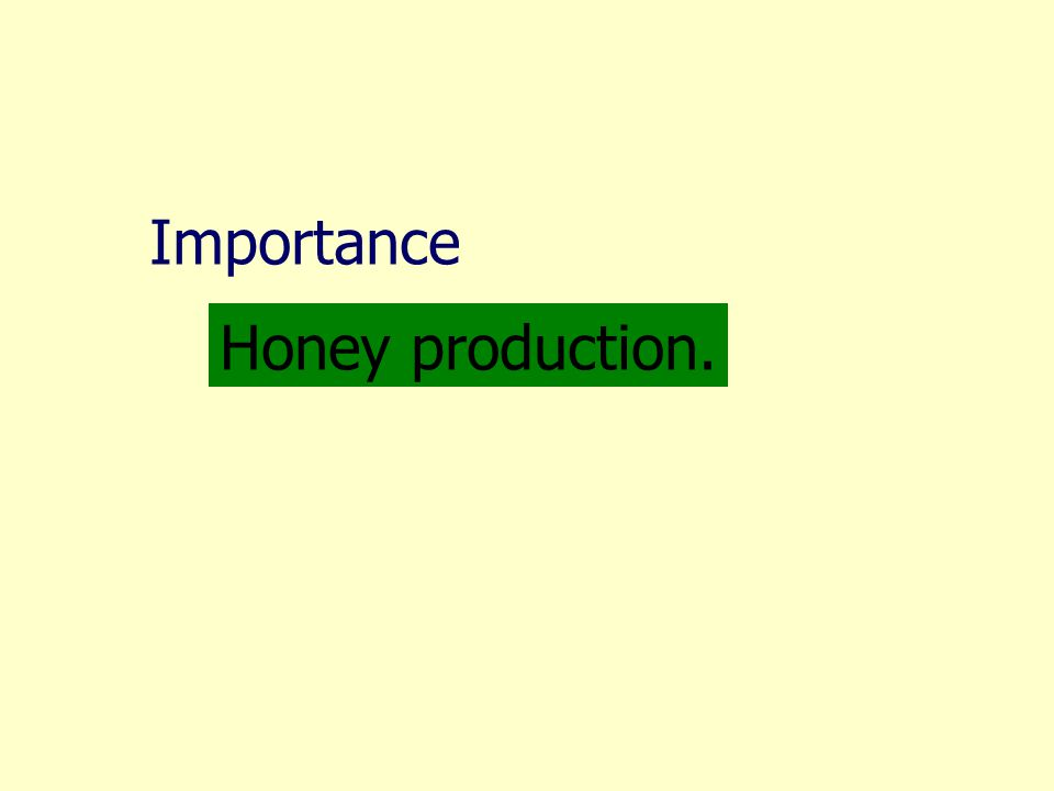 Importance Honey production.