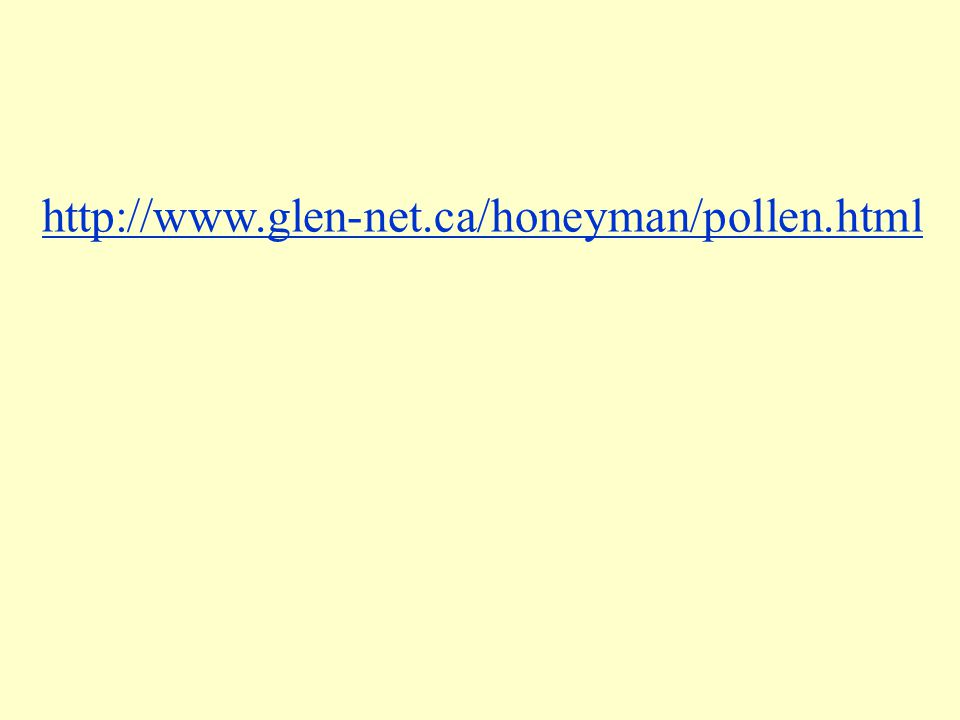 http://www.glen-net.ca/honeyman/pollen.html