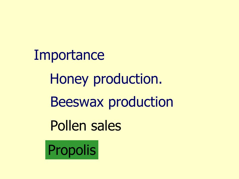 Importance Honey production. Beeswax production Pollen sales Propolis