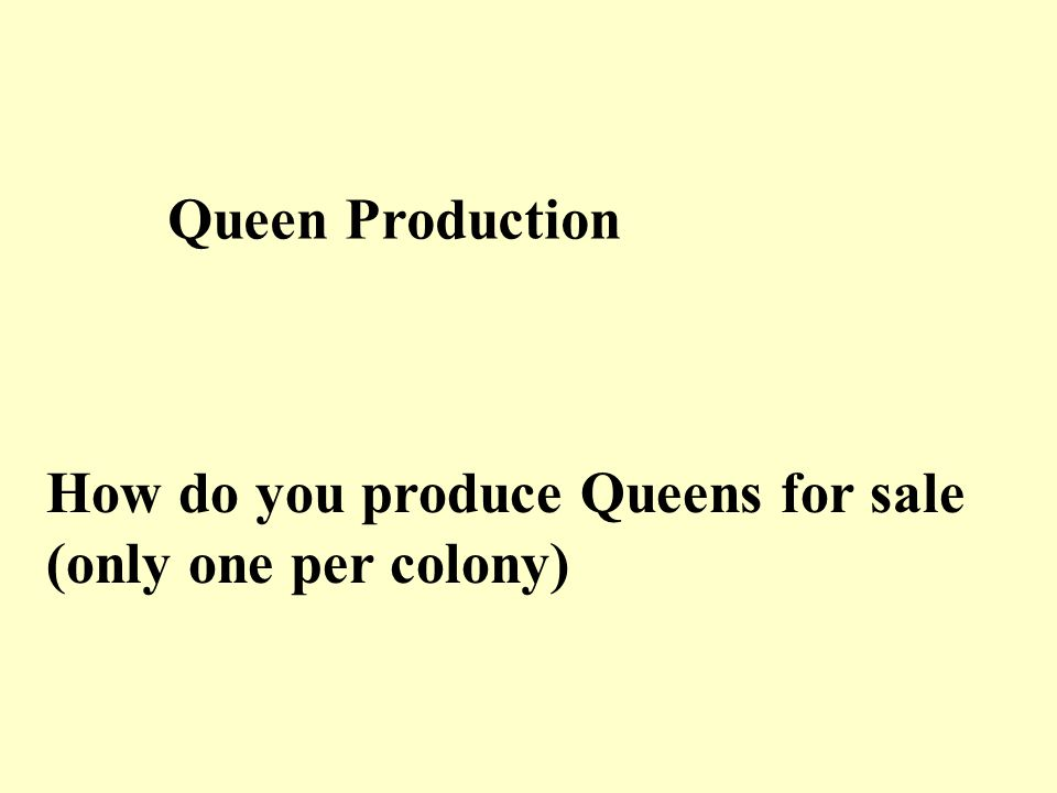 Queen Production How do you produce Queens for sale (only one per colony)