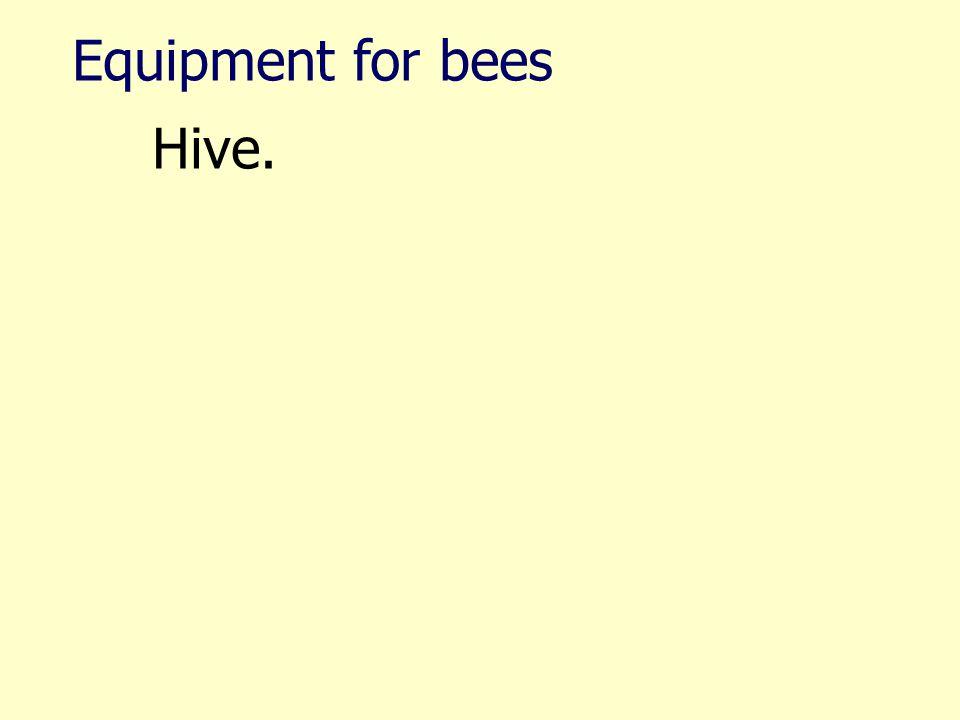 Hive.