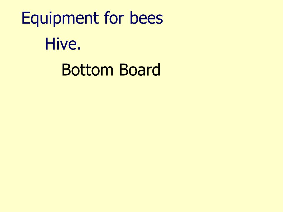 Equipment for bees Hive. Bottom Board