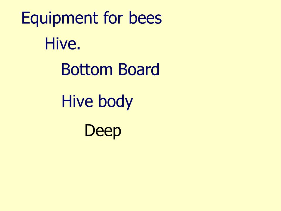 Equipment for bees Hive. Bottom Board Hive body Deep