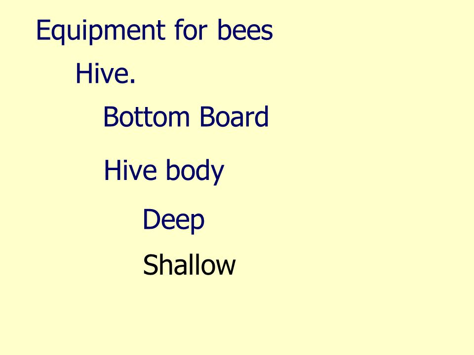 Equipment for bees Hive. Bottom Board Hive body Deep Shallow