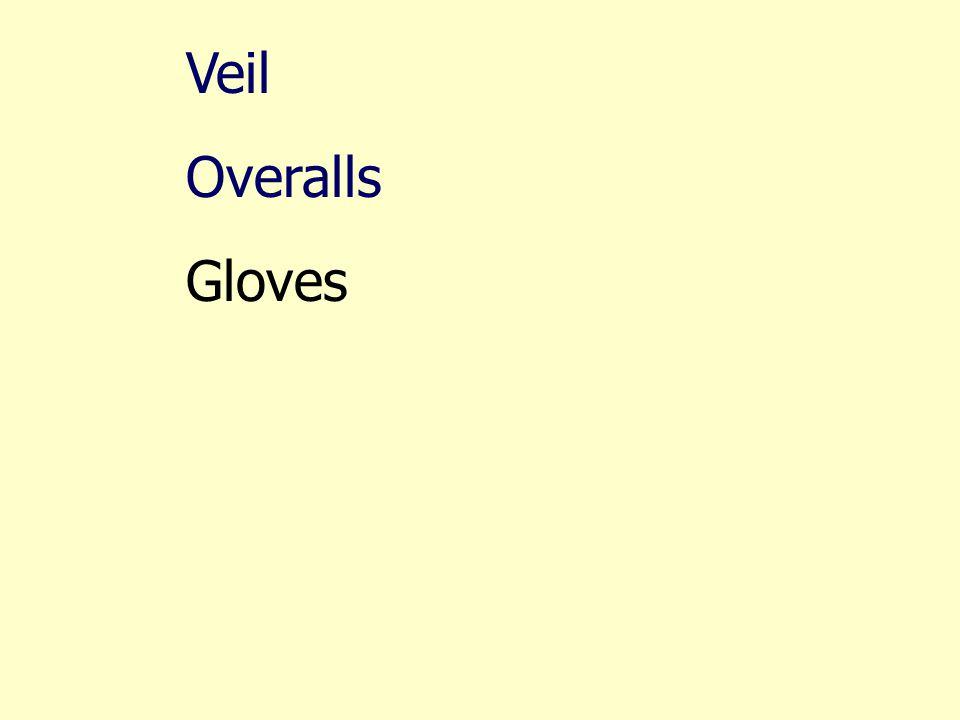 Veil Overalls Gloves