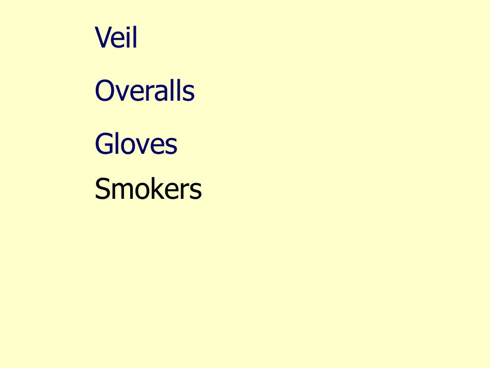 Veil Overalls Gloves Smokers