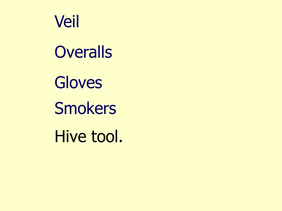 Veil Overalls Gloves Smokers Hive tool.