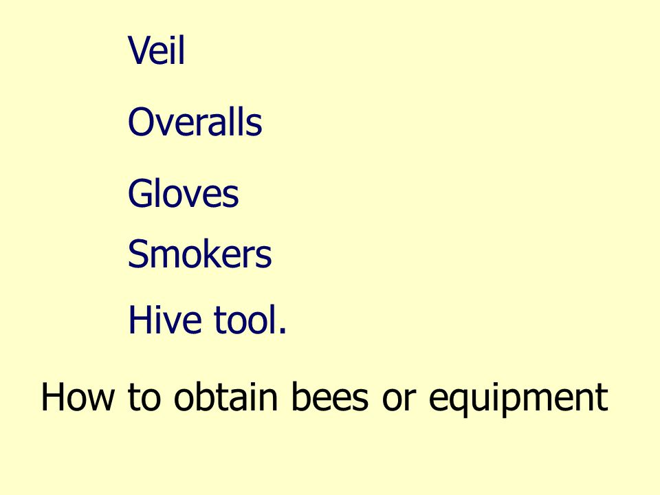 Veil Overalls Gloves Smokers Hive tool. How to obtain bees or equipment