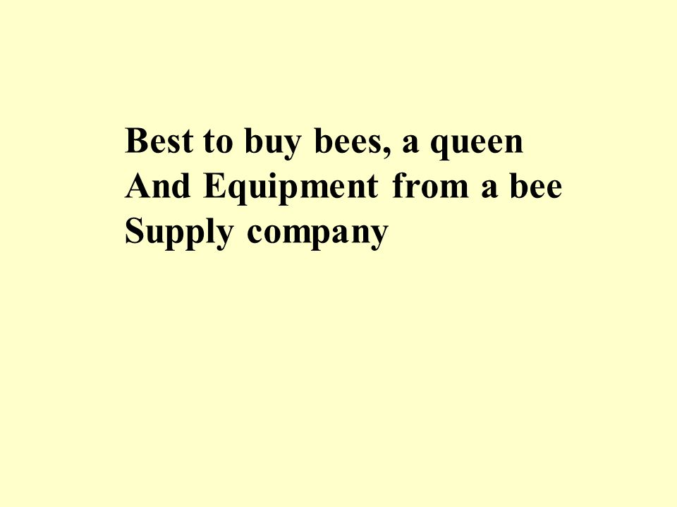 Best to buy bees, a queen And Equipment from a bee Supply company
