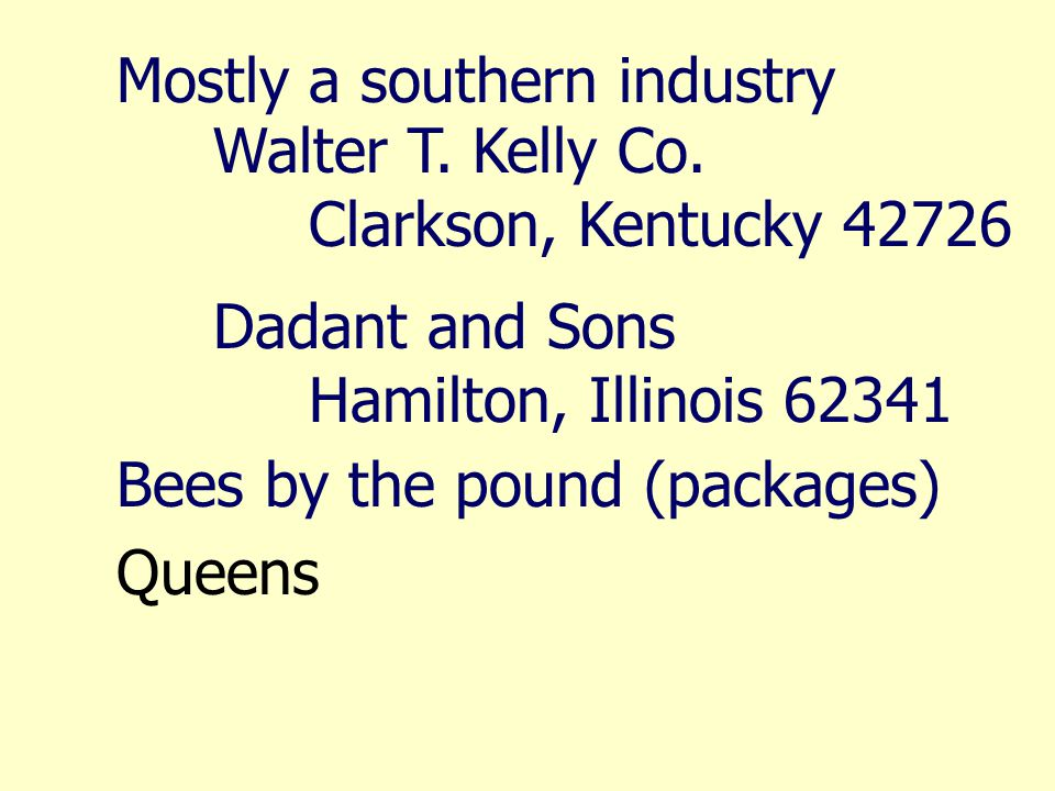 Mostly a southern industry Walter T. Kelly Co.
