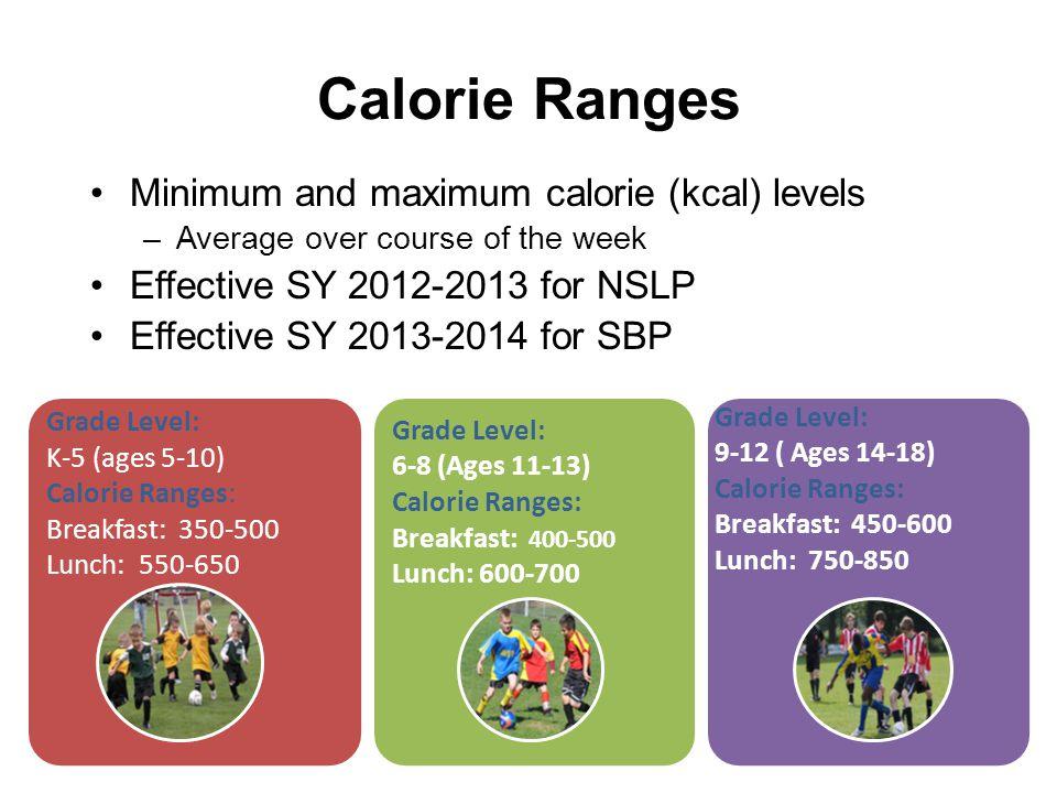 Dr. John D. Barge, State School Superintendent Making Education Work for All Georgians www.gadoe.org Calorie Ranges Minimum and maximum calorie (kcal)