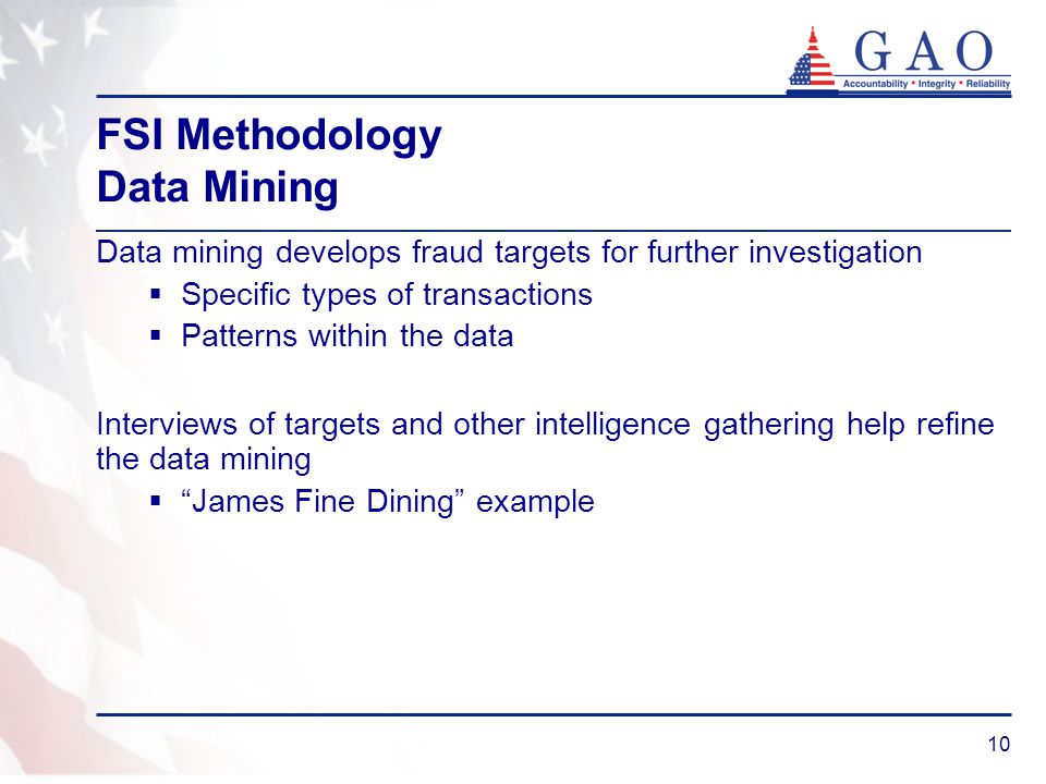 10 FSI Methodology Data Mining Data mining develops fraud targets for further investigation Specific types of transactions Patterns within the data In