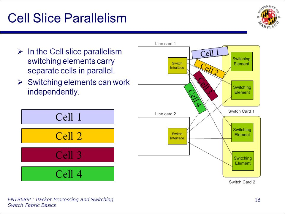 16 ENTS689L: Packet Processing and Switching Switch Fabric Basics Cell Slice Parallelism In the Cell slice parallelism switching elements carry separate cells in parallel.