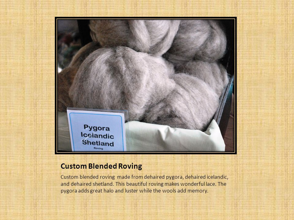 Custom Blended Roving Custom blended roving made from dehaired pygora, dehaired icelandic, and dehaired shetland.