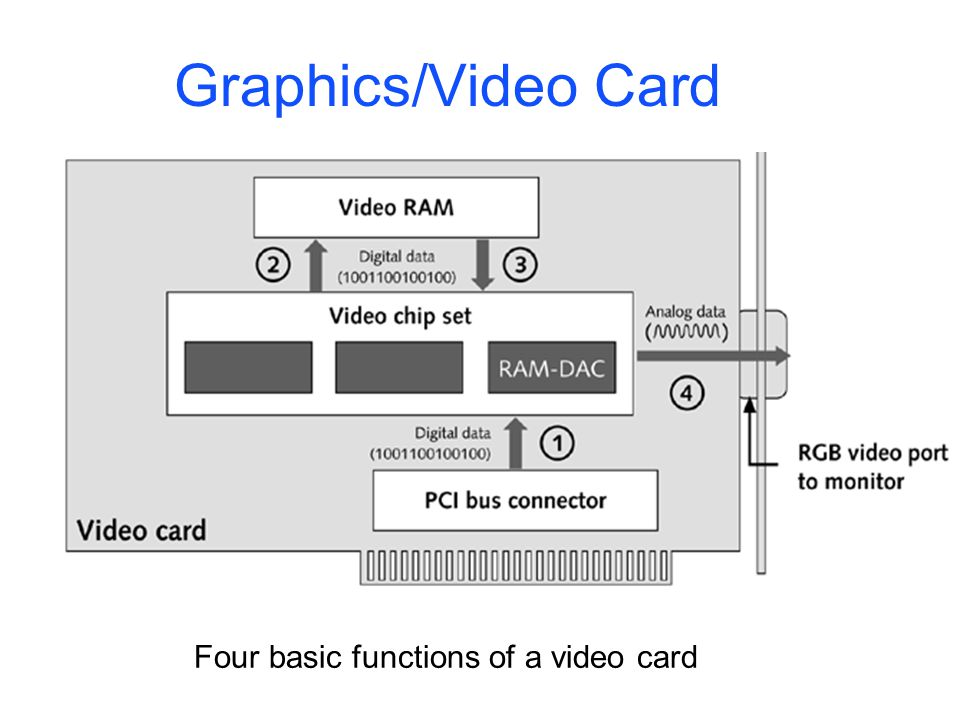 Graphics/Video Card Four basic functions of a video card