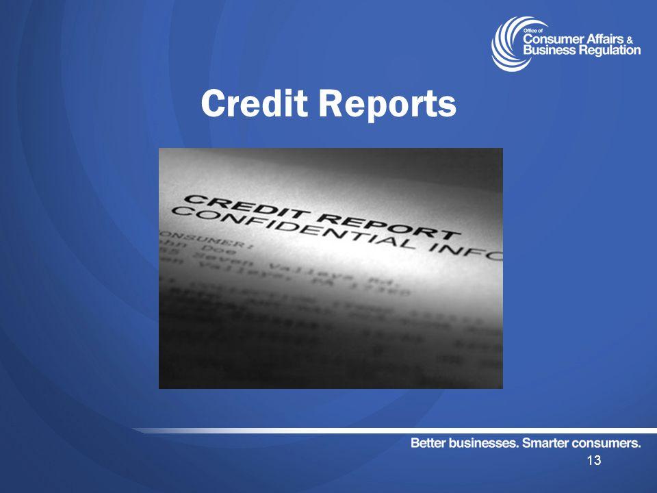 Credit Reports 13
