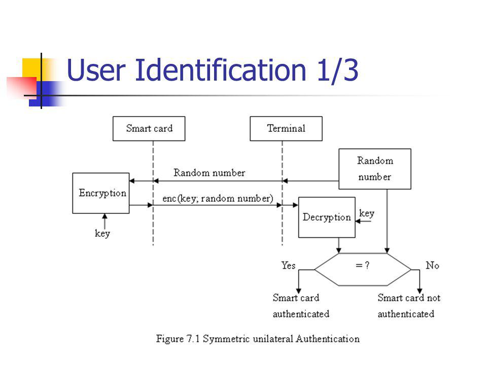 User Identification 1/3