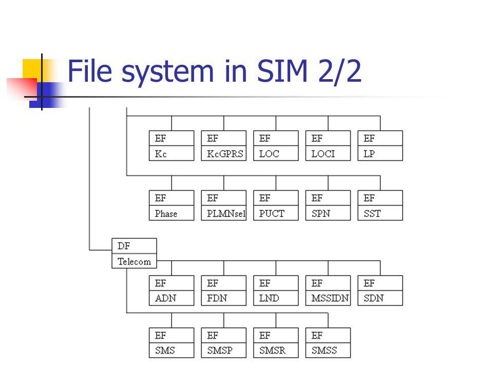 File system in SIM 2/2