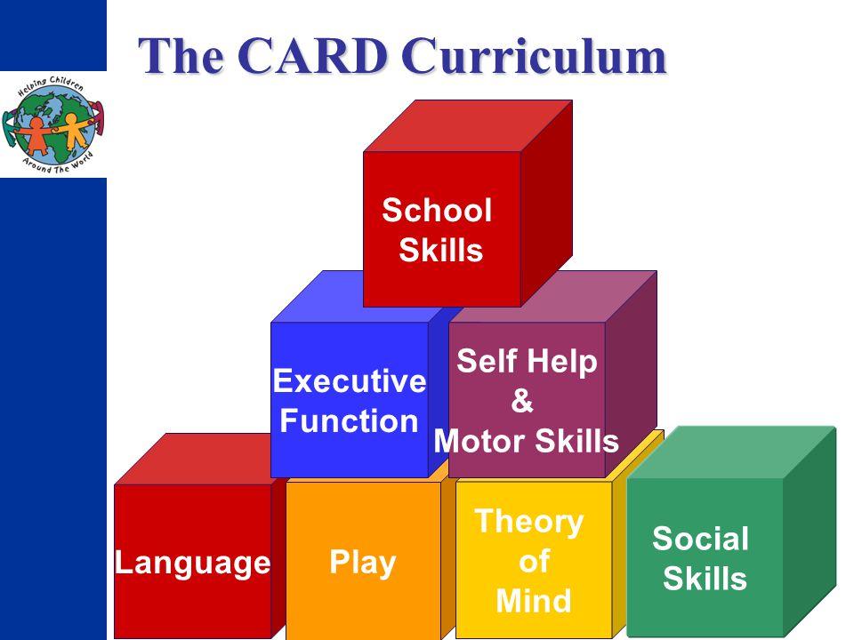 Language Play Theory of Mind Social Skills Executive Function Self Help & Motor Skills School Skills