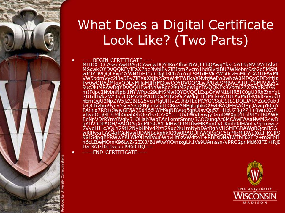 What Does a Digital Certificate Look Like.