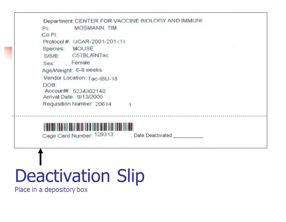 Deactivation Slip Place in a depository box Date Deactivated:___________