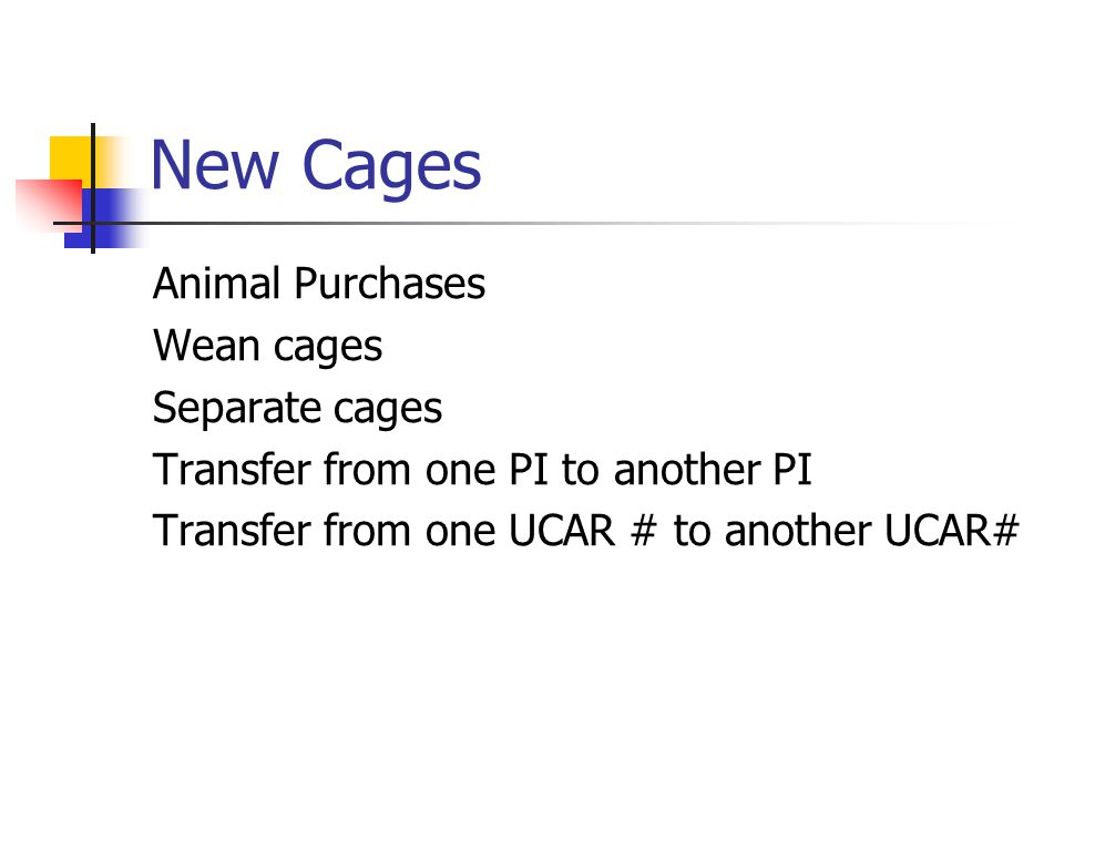 New Cages Animal Purchases Wean cages Separate cages Transfer from one PI to another PI Transfer from one UCAR # to another UCAR#