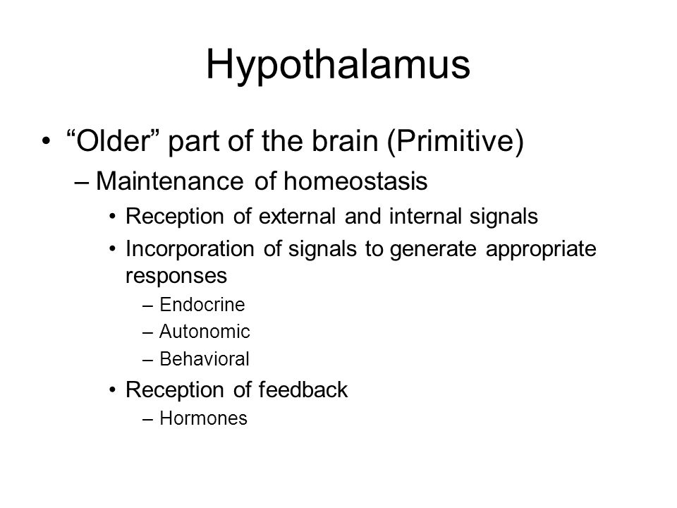 Older part of the brain (Primitive) –Maintenance of homeostasis Reception of external and internal signals Incorporation of signals to generate appropriate responses –Endocrine –Autonomic –Behavioral Reception of feedback –Hormones