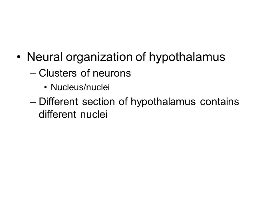 Neural organization of hypothalamus –Clusters of neurons Nucleus/nuclei –Different section of hypothalamus contains different nuclei