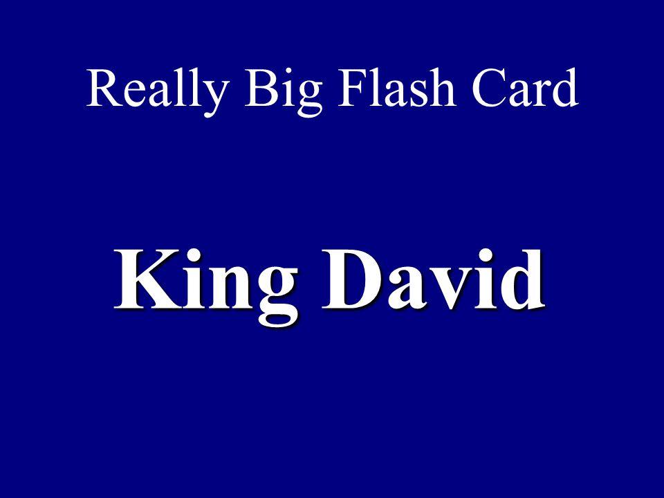 Really Big Flash Card King David