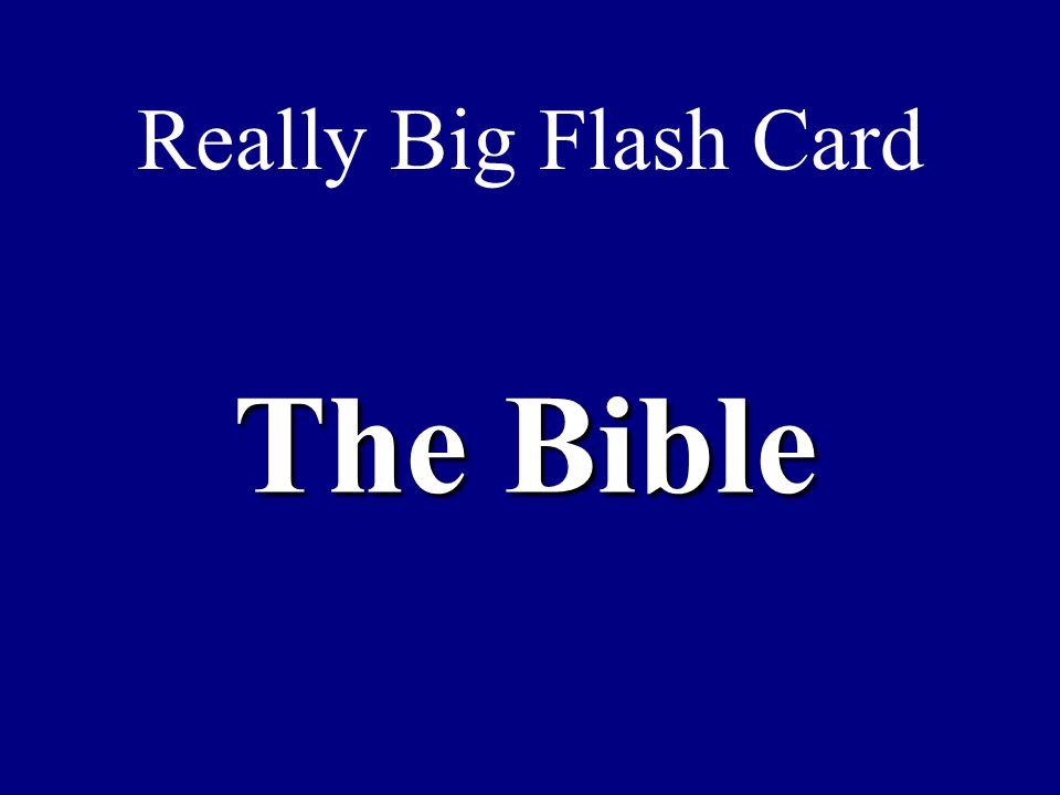 Really Big Flash Card The Bible