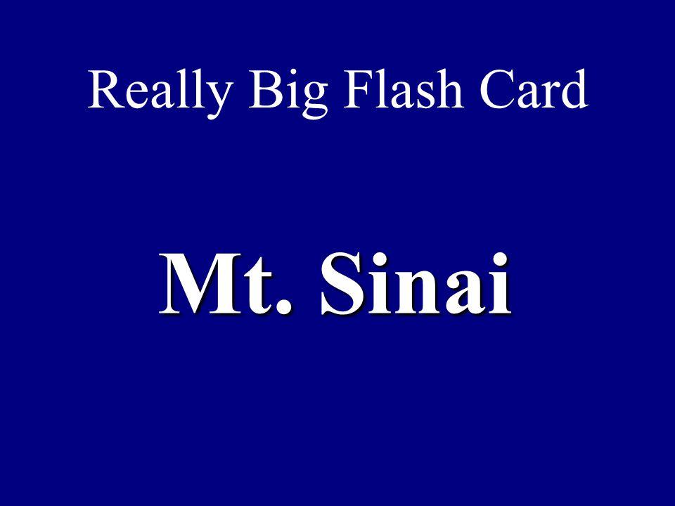Really Big Flash Card Mt. Sinai
