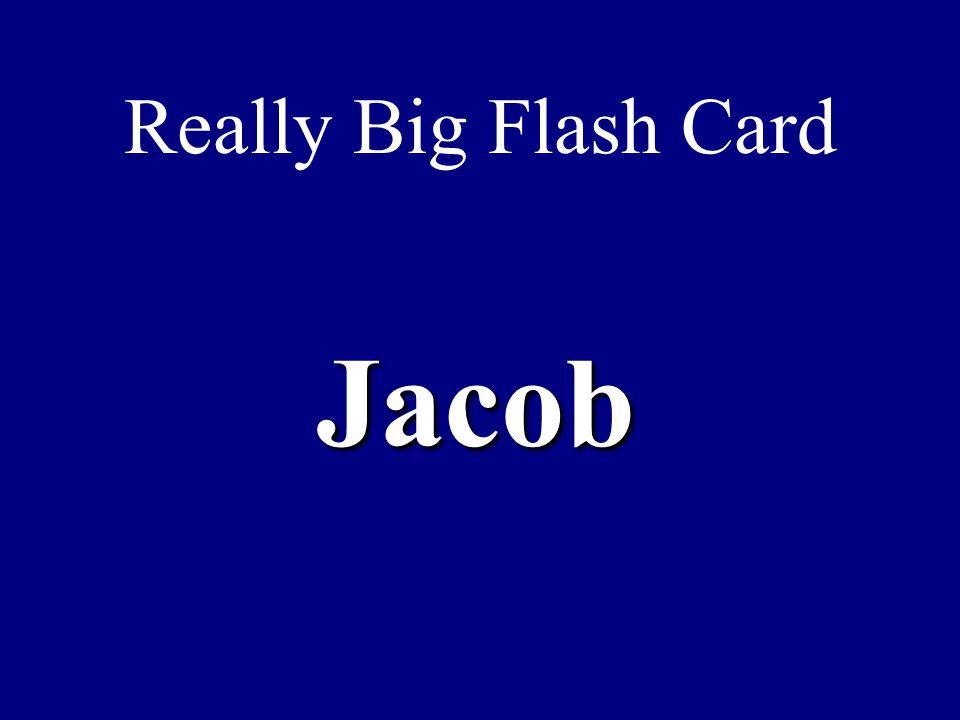 Really Big Flash Card Jacob