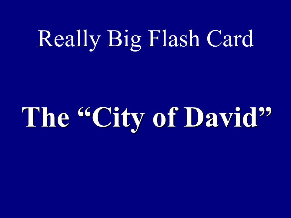 Really Big Flash Card The City of David