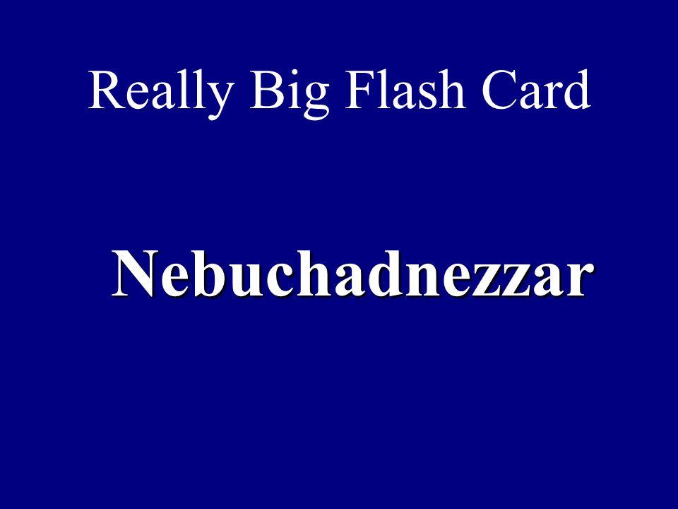 Really Big Flash Card Nebuchadnezzar