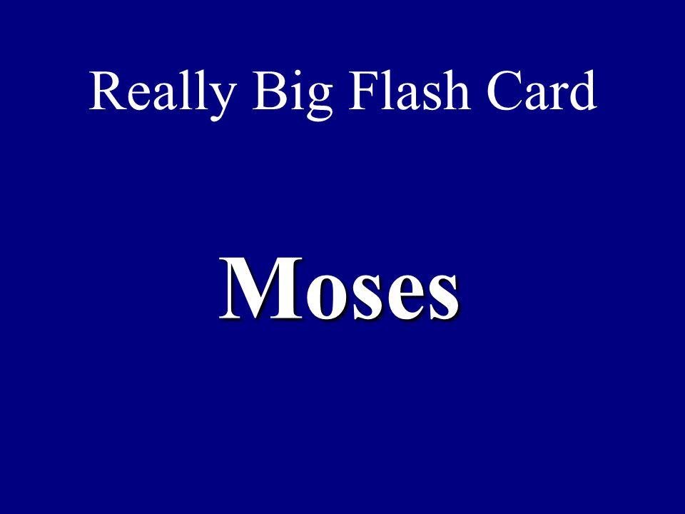Really Big Flash Card Moses