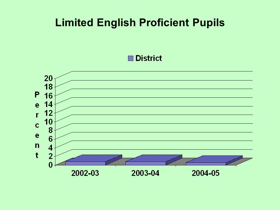 Limited English Proficient Pupils