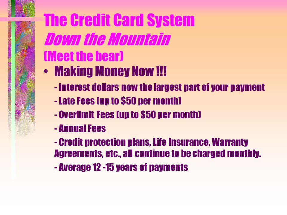 The Credit Card System Down the Mountain (Meet the bear) Making Money Now !!.
