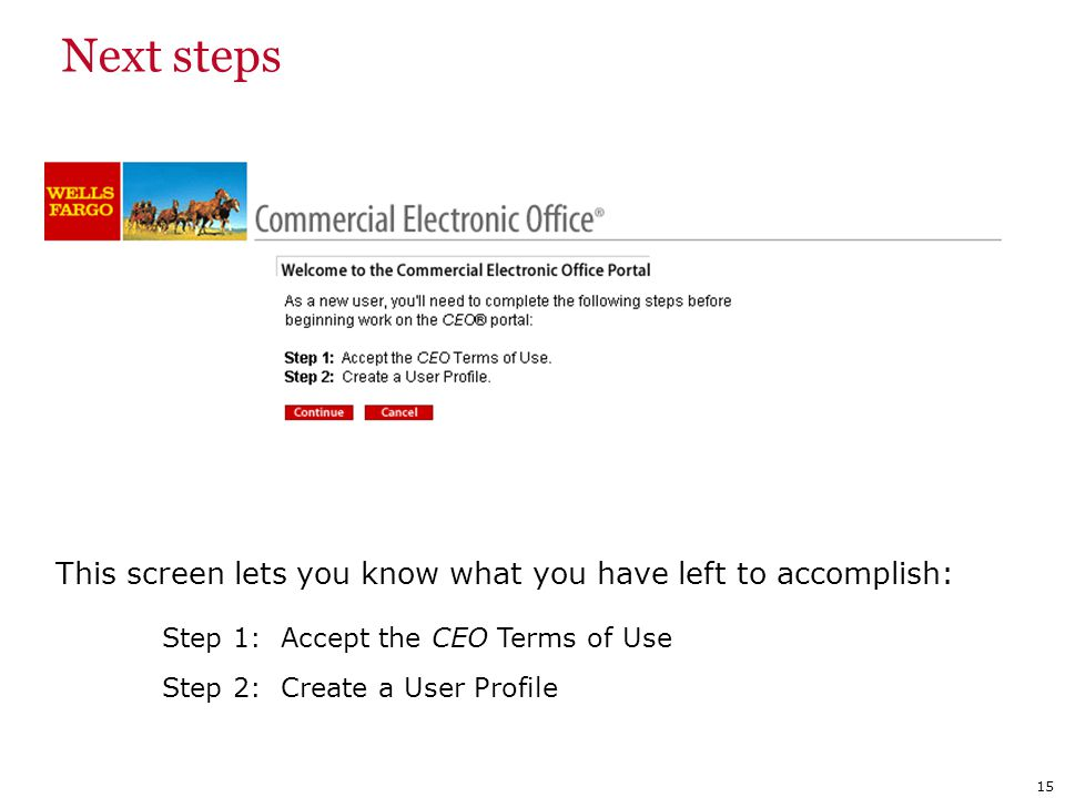 This screen lets you know what you have left to accomplish: Step 1: Accept the CEO Terms of Use Step 2: Create a User Profile Next steps 15