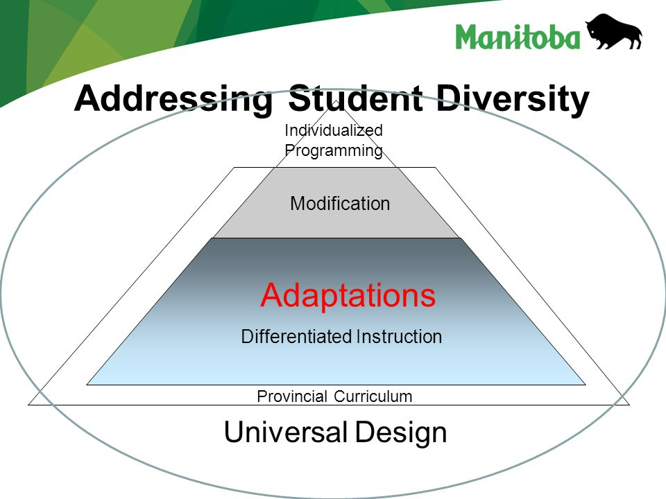Addressing Student Diversity Universal Design Individualized Programming Modification Adaptations Differentiated Instruction Provincial Curriculum