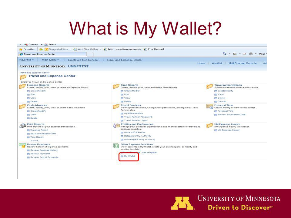 What is My Wallet?