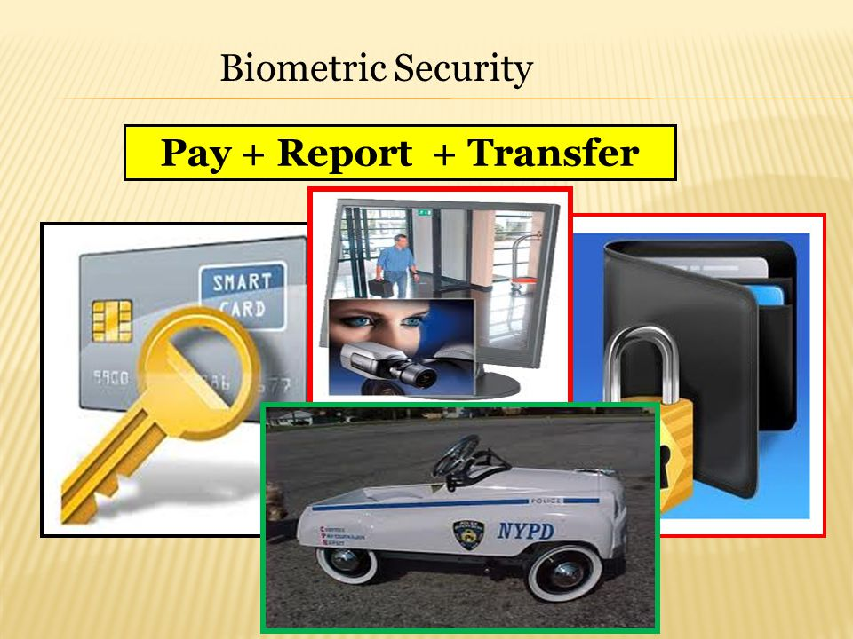 Biometric Security Pay + Report + Transfer